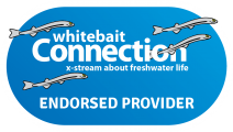 white bait connection