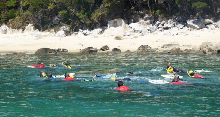 experiencing marine reserves