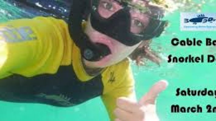 cable-bay-community-guided-snorkel-day